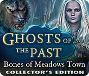 Ghosts of the Past: Bones of Meadows Town Collector's Edition